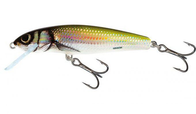 SALMO® Minnow 5 cm floating / Holo Bleak