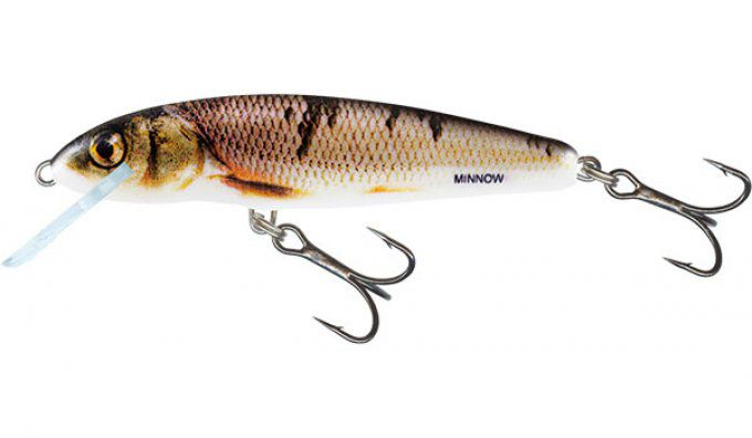 SALMO® Minnow 5 cm sinking / Wounded  Dace
